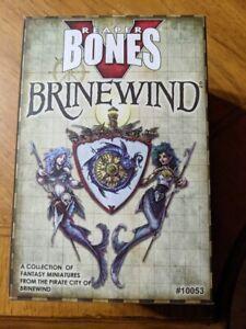 Brinewind Expansion Reaper Bones V Kickstarter DnD Pathfinder ttrpg fantasy