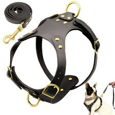 Genuine Leather Dog Harness and Leash Set for Small Dogs Puppy French Bulldog