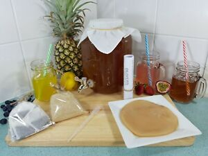 Kombucha Kit 4lt Jar With Tap, Includes All Ingredients To Brew, Organic Scoby