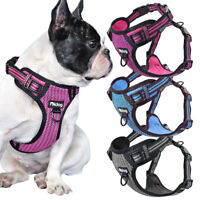 Pet Dog No Pull Harness Reflective Mesh Breathable Pet Vest for French Bulldog
