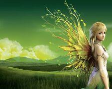 Enchanted Fairy Goddess Reiki Attunement/healing/pdf manual on cd + bonus