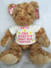 PERSONALISED WORLDS BEST BIG LITTLE SISTER BROTHER CHUBBY HONEY BEAR