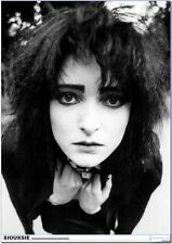 "New SIOUXSIE Holland Park, London 1981 34"" x 24"" Poster"