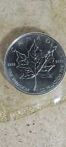 2006 1 oz Palladium Canadian Maple Leaf Coin uncirculated Unc mint sealed cond.