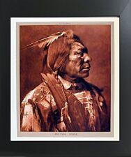 Lone Flag - Atsina Native American Art Print Contemporary Black Framed Picture