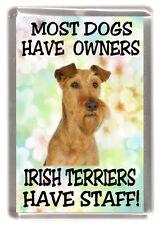 "Irish Terrier Dog Fridge Magnet ""Most Dogs.... Irish Terriers Have Staff"""