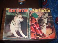 Rin Tin Tin 5-33---lot of 12 comic books