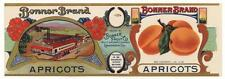 *Original* BONNER Lankershim PACKING HOUSE TRAIN Apricot Can Label NOT A COPY!