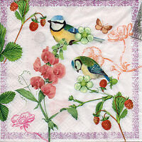 4 Motivservietten Servietten Napkins Tovaglioli  Vogel Vögel Blaumeisen (840)