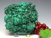 Spectacular Botryoidal Malachite Raw Mineral Specimen -  Congo - 3040g / 6.7 lbs