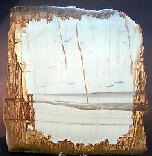Pietra Paesina Landscape Stone Landschaftsmarmor Florentine Marble Paésine PAE83