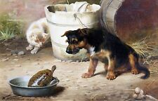 "William Henry Trood, Terrier Dog, Cat, Turtle, 1880 antique ART PRINT, 16""x11"""