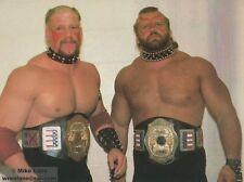 CLASSIC ODDBALL  PRO WRESTLING 7 DVD LOT- ECW USWA, WWC, PORTLAND, NWA,AWA,