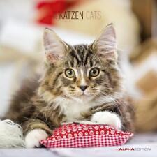 Katzen 2019 Maße(B/H): 30 x 60 cm, Fotokalender, Dt/dän/niederländ/engl/frz/ital