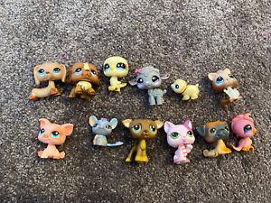 12 x  LPS littlest pet shop toys