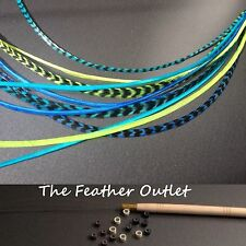 Feathers Hair Extensions Kit Lot 10 Whiting Grizzly long XL Blue Real SURF KIT