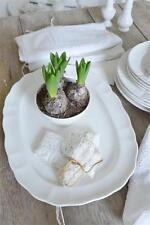 Servierplatten & -schalen im Shabby Stil aus Porzellan fürs Esszimmer
