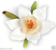 Sizzix Thinlits Die Set of 12 Susan's garden Flower, Narcissus Item 658863