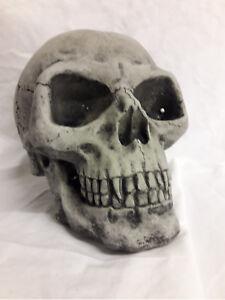 Totenschädel Steinfigur MYSTISCHER Gargoyle GARGOYL Frostsicher 6,6 kg