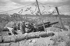 WWII B&W Photo US Army 105mm Howitzer and Crew Tunisia 1943  WW2 /1298