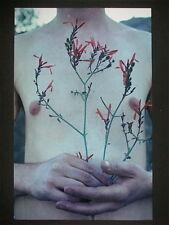 Miron Schmückle , Original Fotografie 1998, signiert + numm. 1/3