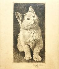 Halvard Storm Etching Print of a Kitten, Signed & Numbered 34/100, 1932 Norway