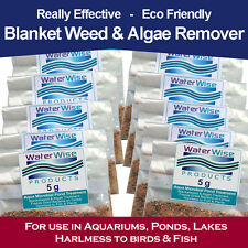 WaterWise Blanket Weed Killer - Algae Green Pond Treatment -5g