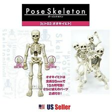 Re-ment Miniatures Pose Skeleton Toy - Human 03 Big Person