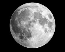 Full Moon Astronomy Outer Space Solar System 11 x 14 Photo Photograph Picture