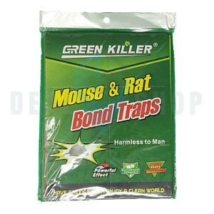 Green Killer Mouse And Rat Bond Traps