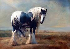 BEAUTIFUL HORSE IN LANDSCAPE * QUALITY CANVAS FINE ART PRINT
