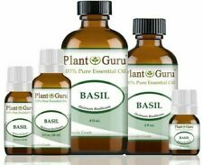 Basil Essential Oil 100% Pure Therapeutic Grade Ocimum Basilicum Extract