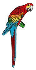 ah14 Eigentlicher Papagei Vogel Aufnäher Bügelbild Applikation Patch Zoo Ara