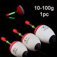 10-100g Fishing Float EVA Luminous Floats Fish Bait for Sea Fishing Carp Tackle