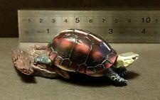 Rare Kaiyodo Natural Monuments of Japanese Chinese Box Turtle Figure