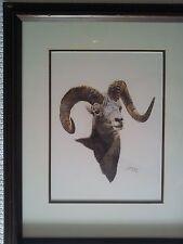 Stone Sheep Ram Watercolor Painting by AJ McCoy