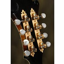 Waverly F-style Mandolin Machines with Pearl Knobs, Satin gold