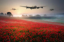 Lancaster Spitfire & Poppy  Canvas Print 24x18 inches