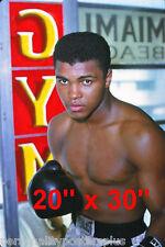 "Muhammad Ali~Heavyweight Champ~The Greatest~1963~Poster~20"" x  30"" Photo"