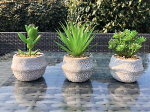 Set 3 Faux Succulents Plants Grey Terracotta Pots Bathroom Kitchen Artificial
