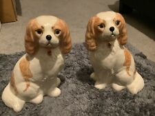 More details for  miranda smith / m c smith - liver and white king charles cavalier spaniels