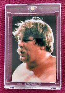 1981 KAJIWARA POPY PURORESU STAN HANSEN ROOKIE WWE WWF NWA BBM JAPAN WRESTLING