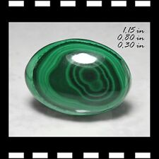 MALACHITE CABACHON CAB OVAL MINERALS CRYSTALS CARVINGS GEMS-MIN