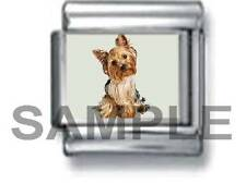 YORKIE PUPPY DOG SITTING 9MM ITALIAN CHARM LINK yorkshire pet love terrier
