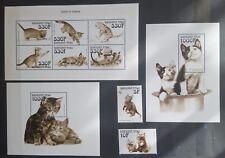 Briefmarken Katzen Burkina Faso 2 Bl.+KB.+satz,postfrisch