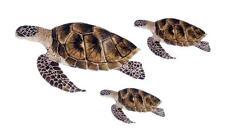 Sea Turtle Ocean Family Decal Vinyl Sticker Set of 3 for Window Decor Laptop