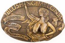 Hebillas vintage de bronce