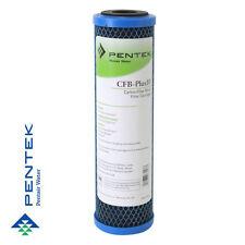 Pentek CFB-Plus10 Fibredyne Modificato Blocchetto Carbonio 5 micron Filtri