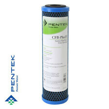 Pentek CFB-Plus10 Fibredyne Modified Carbon Block 5 micron Filter