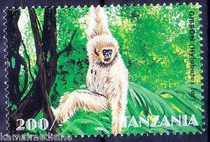 Tanzania 1998 MNH, Gibbon, Monkeys, Wild Animals (NG)